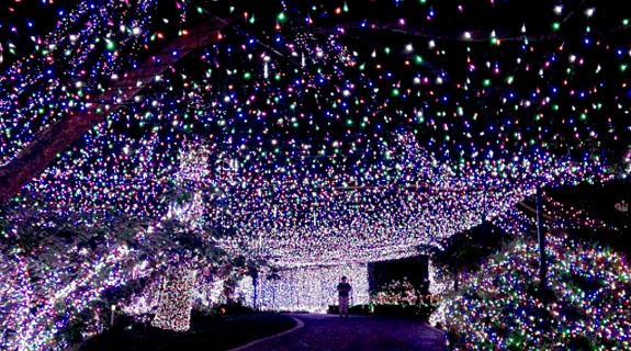 lights5