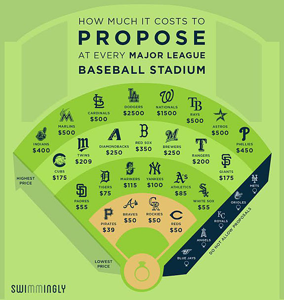 proposalballpark