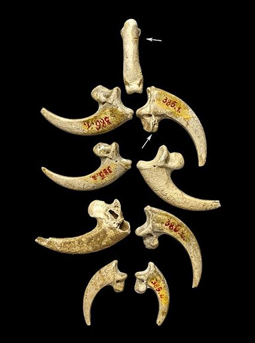 cavemanjewelry2