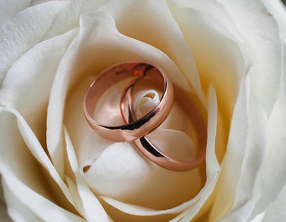 Rosegold1
