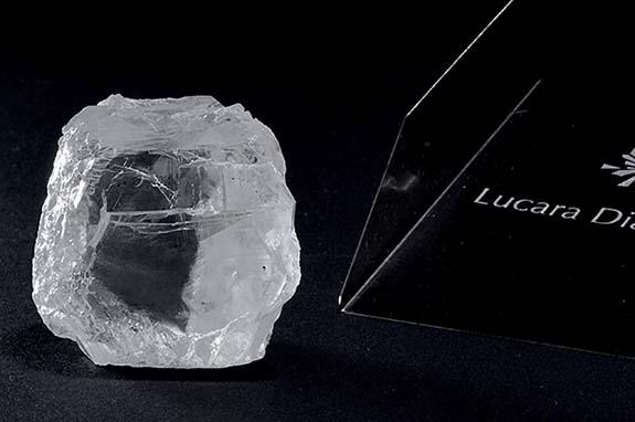 Lucaraice1